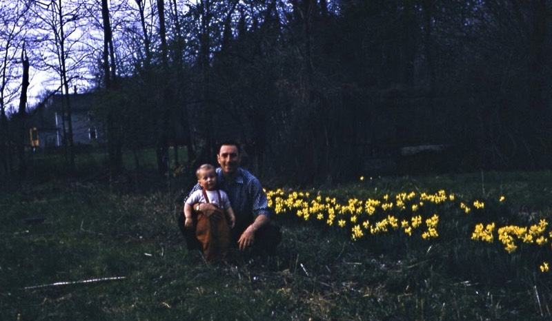 father and toddler son in garden by yellow flowers